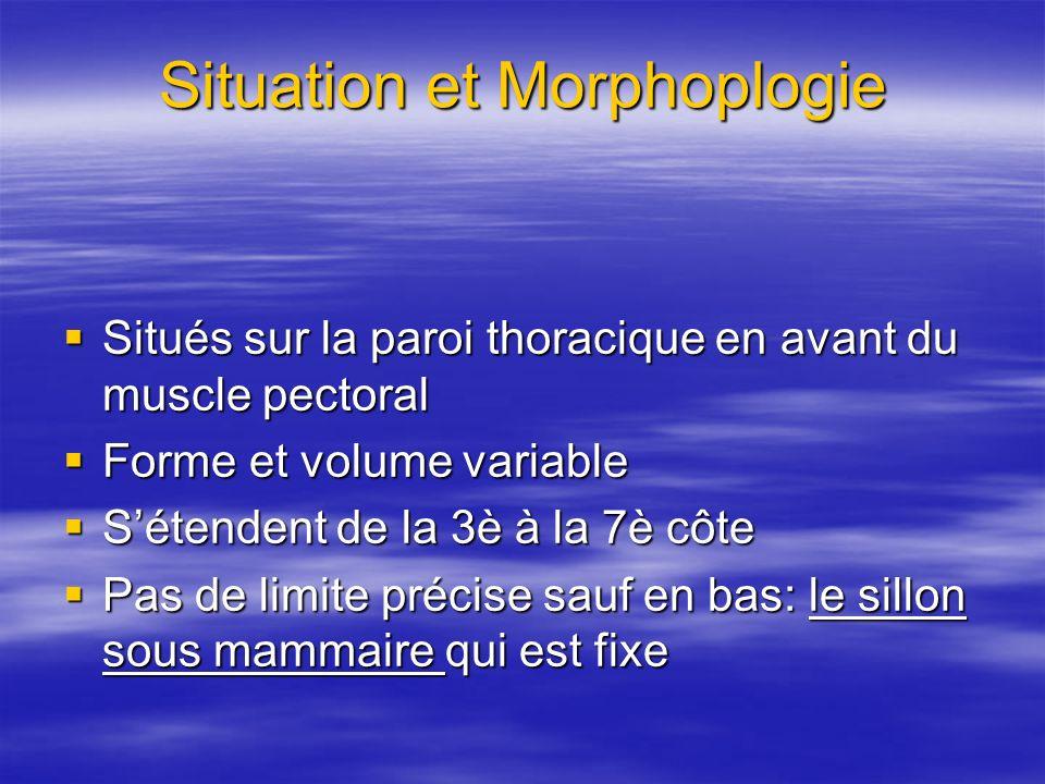 Situation et Morphoplogie Situés sur la paroi thoracique en avant du muscle pectoral Situés sur la paroi thoracique en avant du muscle pectoral Forme