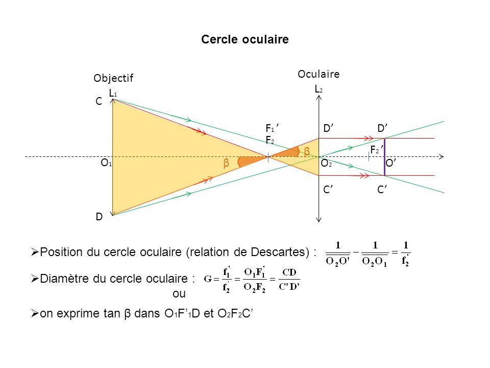 Cercle oculaire Position du cercle oculaire (relation de Descartes) : O2O2 F2F2 F 2 Oculaire L 2 F 1 O1O1 Objectif L 1 C D C D O Diamètre du cercle oc