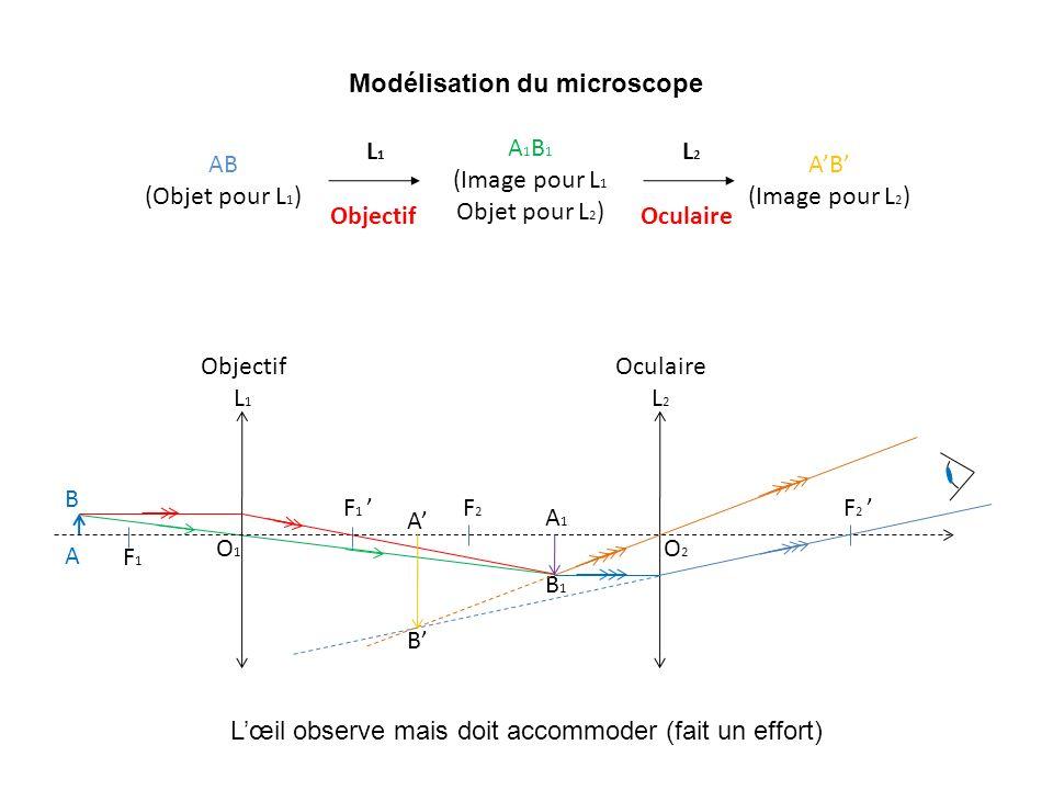 AB (Objet pour L 1 ) A 1 B 1 (Image pour L 1 Objet pour L 2 ) AB (Image pour L 2 ) L1 L1 Objectif L2 L2 Oculaire Modélisation du microscope F1F1 F 1 O