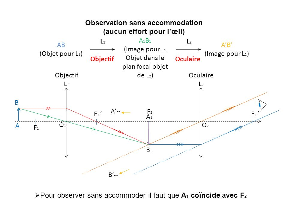 Observation sans accommodation (aucun effort pour lœil) AB (Objet pour L 1 ) A 1 B 1 (Image pour L 1 Objet dans le plan focal objet de L 2 ) AB (Image