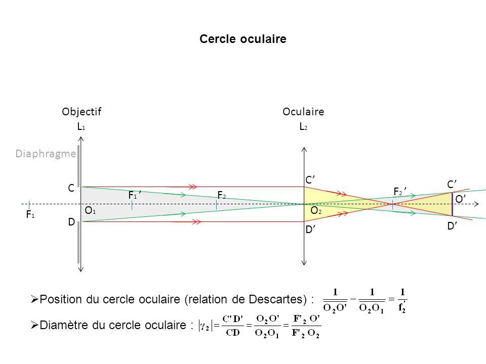 Cercle oculaire F 1 F1F1 O1O1 Objectif L 1 O2O2 F2F2 F 2 Oculaire L 2 Diaphragme C D Position du cercle oculaire (relation de Descartes) : Diamètre du
