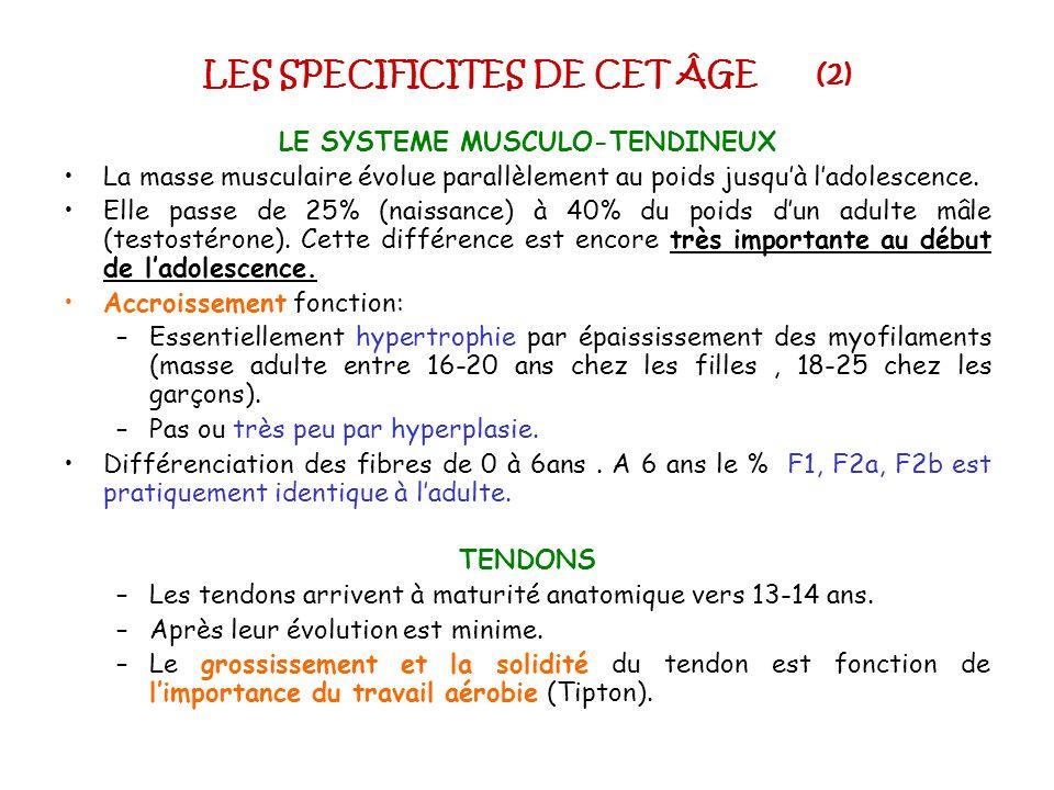 LES SPECIFICITES DE CET ÂGE (2) LE SYSTEME MUSCULO-TENDINEUX La masse musculaire évolue parallèlement au poids jusquà ladolescence. Elle passe de 25%