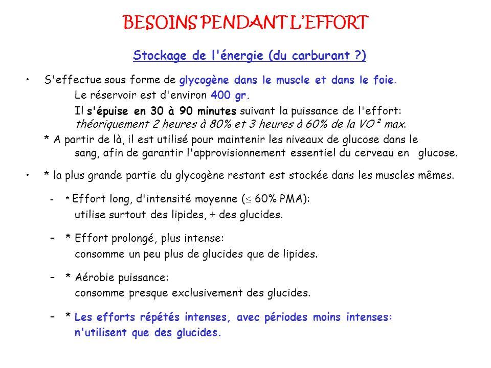 BESOINS PENDANT LEFFORT Stockage de l'énergie (du carburant ?) S'effectue sous forme de glycogène dans le muscle et dans le foie. Le réservoir est d'e
