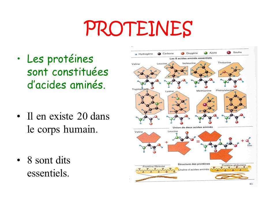 PROTEINES Les protéines sont constituées dacides aminés. Il en existe 20 dans le corps humain. 8 sont dits essentiels.
