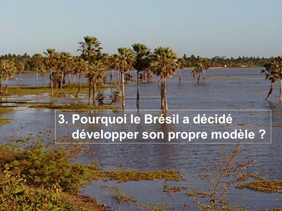 –Cuisinière 97,7% –Télévision95,7% –Refrigerateur 86,7% –Mobile 84,2% –Telephone54,0% –Micro ordinateur:19,91% Laccess Internet14,08% Pourquoi le Brésil a décidé développer son propre modèle ?