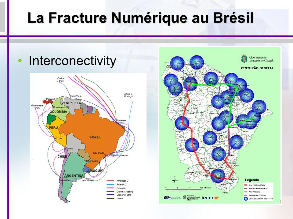 Interconectivity La Fracture Numérique au Brésil