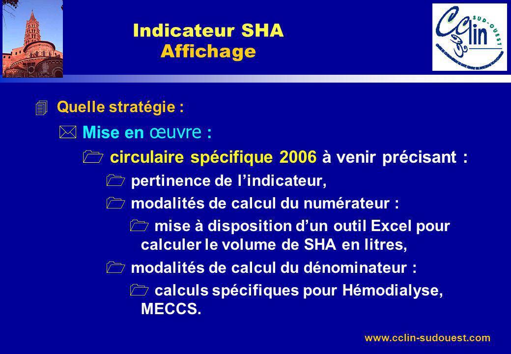 www.cclin-sudouest.com 4 Quelle stratégie : Mise en œuvre : 1 circulaire spécifique 2006 à venir précisant : 1 pertinence de lindicateur, 1 modalités