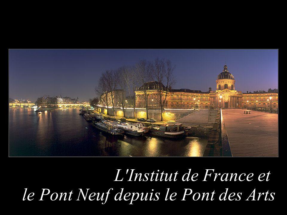 L'Institut de France et le Pont Neuf depuis le Pont des Arts
