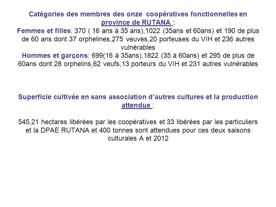 Catégories des membres des onze coopératives fonctionnelles en province de RUTANA : Femmes et filles: 370 ( 16 ans à 35 ans),1022 (35ans et 60ans) et