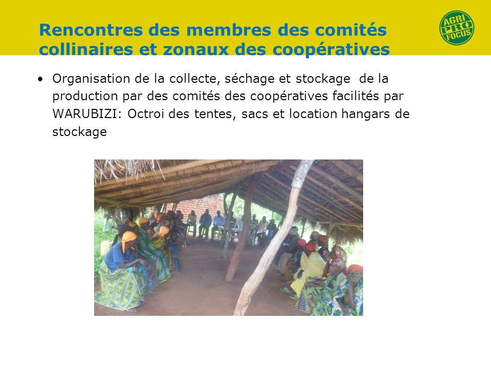 Rencontres des membres des comités collinaires et zonaux des coopératives Organisation de la collecte, séchage et stockage de la production par des co