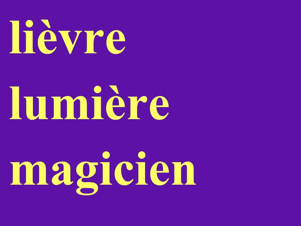 lièvre lumière magicien