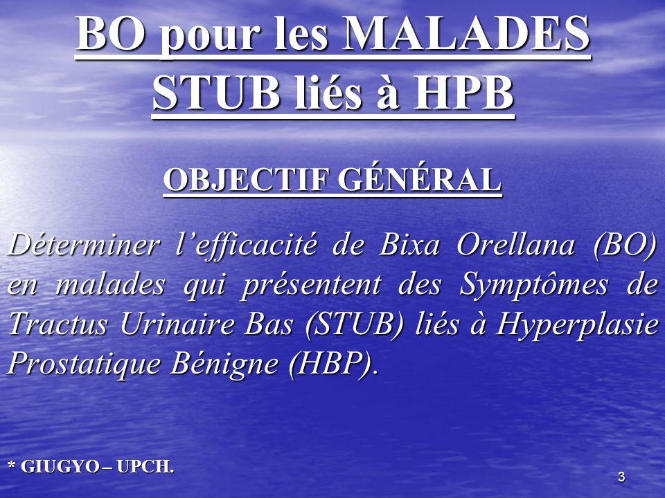 3 BO pour les MALADES STUB liés à HPB OBJECTIF GÉNÉRAL Déterminer lefficacité de Bixa Orellana (BO) en malades qui présentent des Symptômes de Tractus