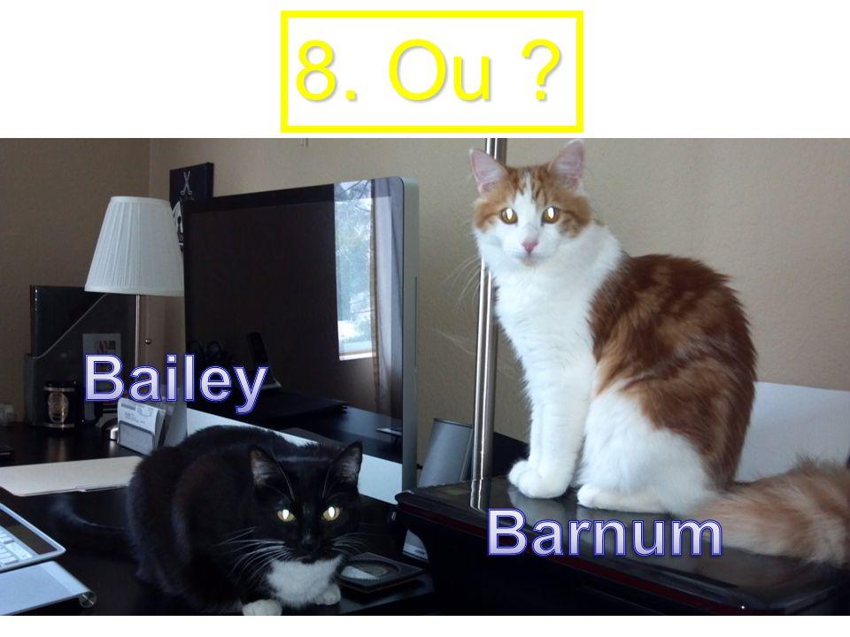 8. Ou ?