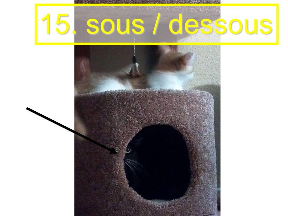 15. sous / dessous