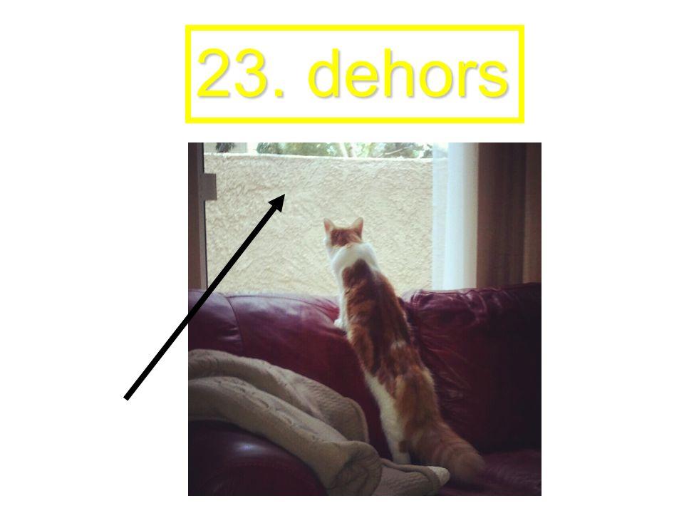 23. dehors
