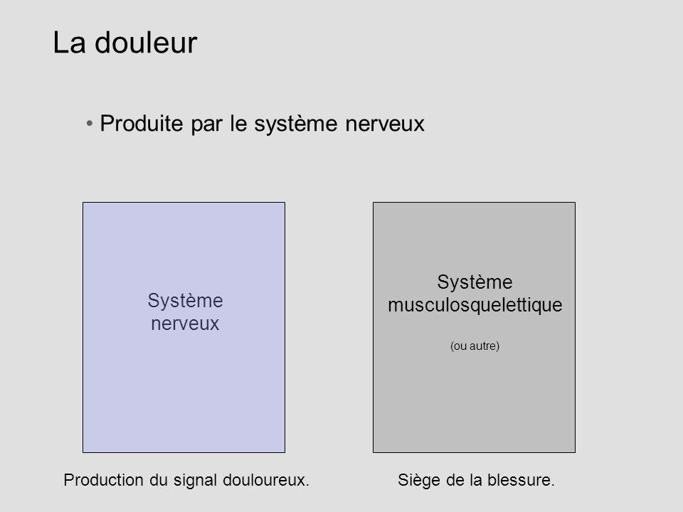 La douleur Système nerveux Système musculosquelettique (ou autre) Produite par le système nerveux Siège de la blessure. Production du signal douloureu