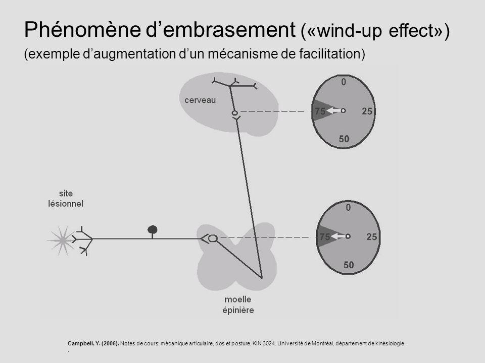 Campbell, Y. (2006). Notes de cours: mécanique articulaire, dos et posture, KIN 3024. Université de Montréal, département de kinésiologie.. Phénomène