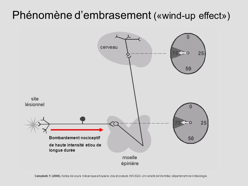 Bombardement nociceptif de haute intensité et/ou de longue durée Phénomène dembrasement («wind-up effect») Campbell, Y. (2006). Notes de cours: mécani