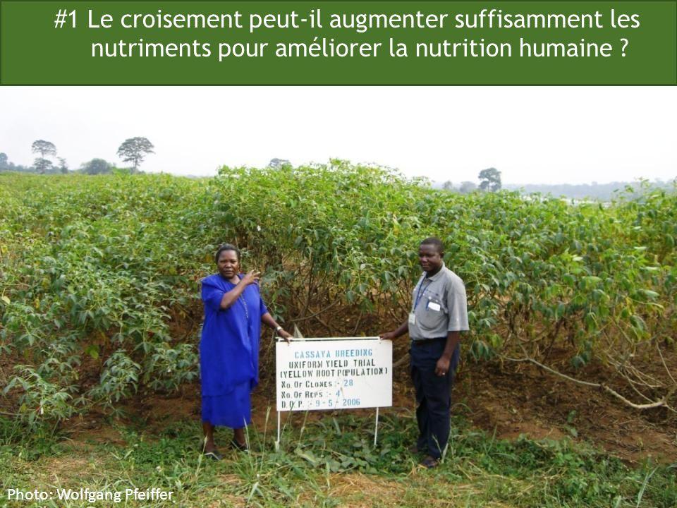 #1 Le croisement peut-il augmenter suffisamment les nutriments pour améliorer la nutrition humaine ? Photo: Wolfgang Pfeiffer
