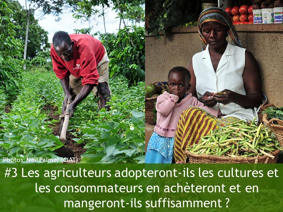#3 Les agriculteurs adopteront-ils les cultures et les consommateurs en achèteront et en mangeront-ils suffisamment ? Photos: Neil Palmer (CIAT)