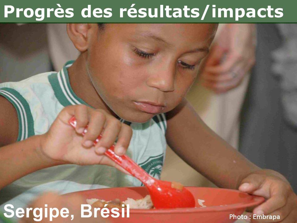 Sergipe, Brésil Progrès des résultats/impacts Photo : Embrapa
