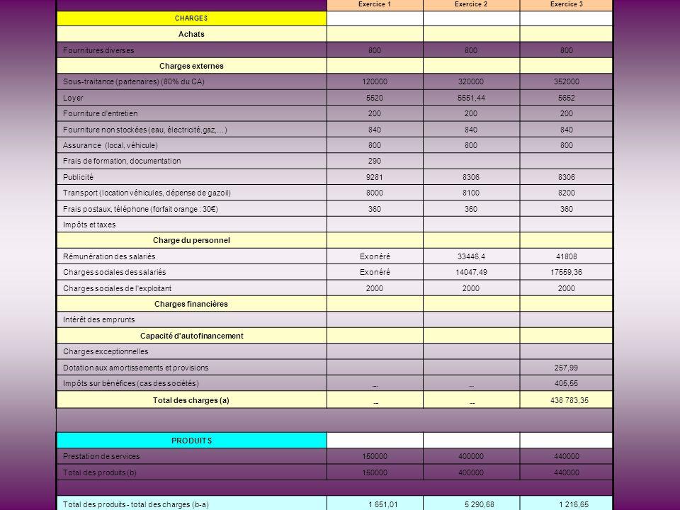 Exercice 1Exercice 2Exercice 3 CHARGES Achats Fournitures diverses800 Charges externes Sous-traitance (partenaires) (80% du CA)120000320000352000 Loye
