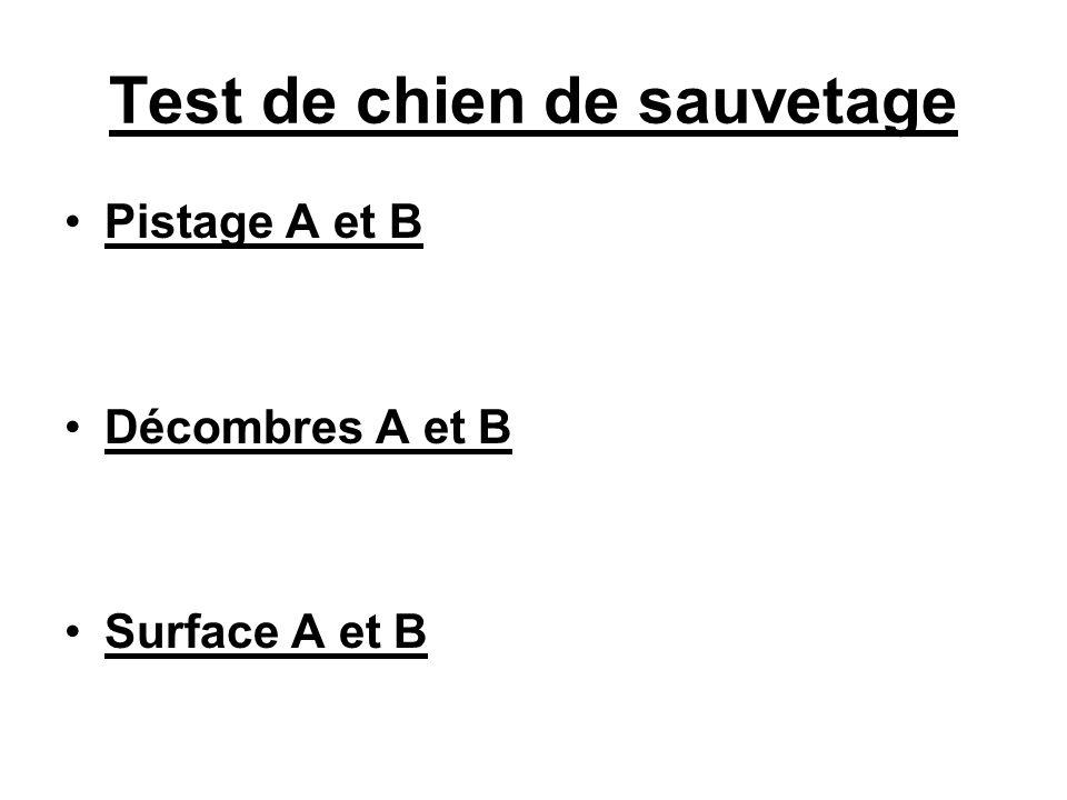 Test de chien de sauvetage Pistage A et B Décombres A et B Surface A et B