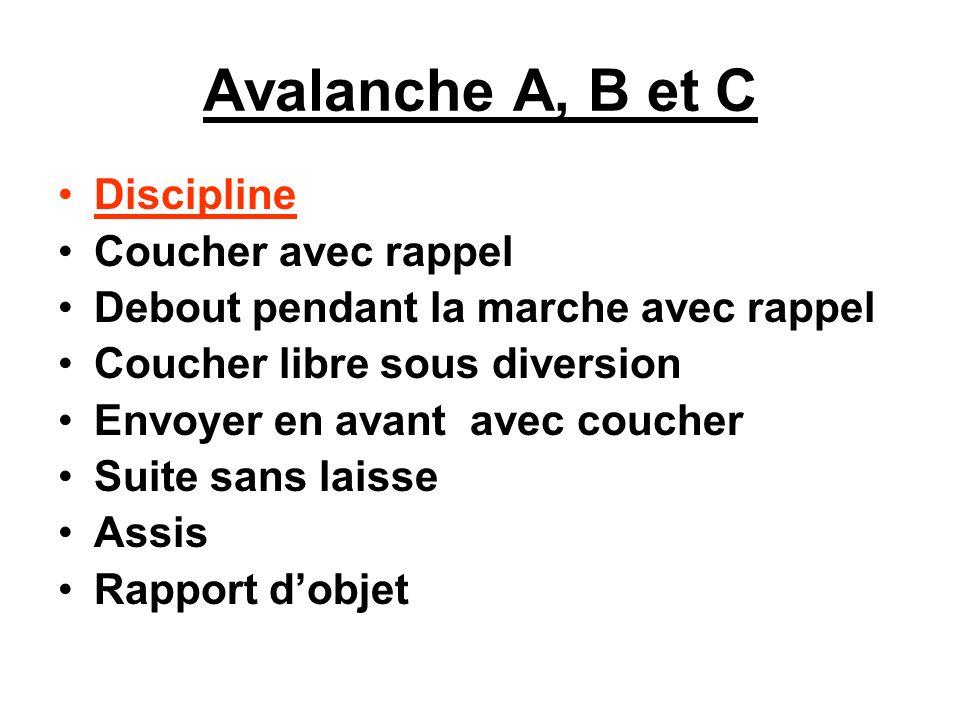 Avalanche A, B et C Discipline Coucher avec rappel Debout pendant la marche avec rappel Coucher libre sous diversion Envoyer en avant avec coucher Sui