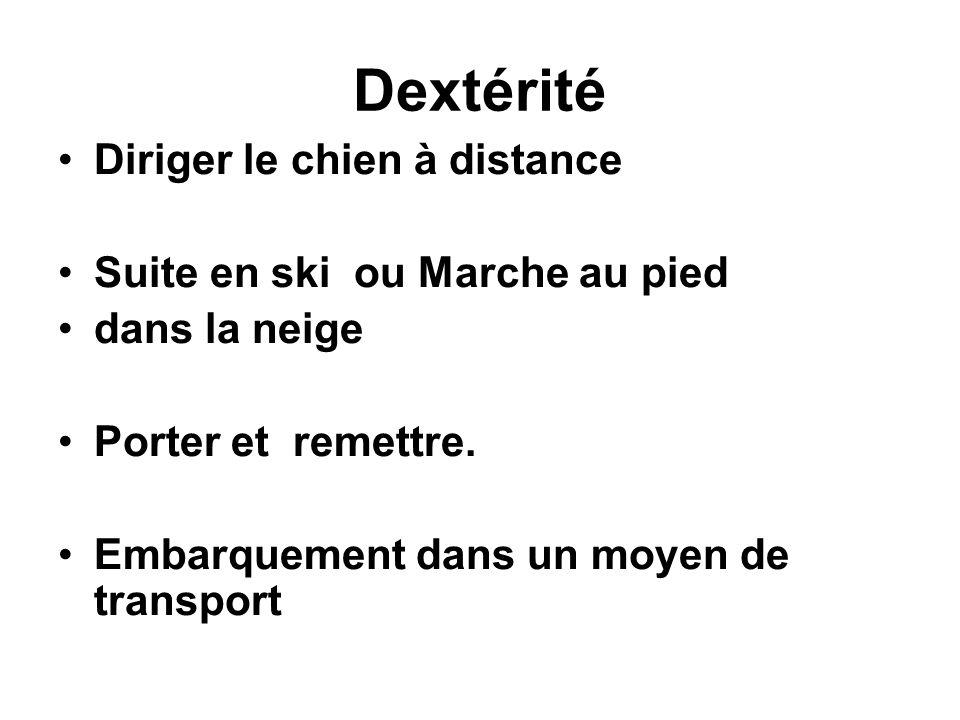 Dextérité Diriger le chien à distance Suite en ski ou Marche au pied dans la neige Porter et remettre. Embarquement dans un moyen de transport