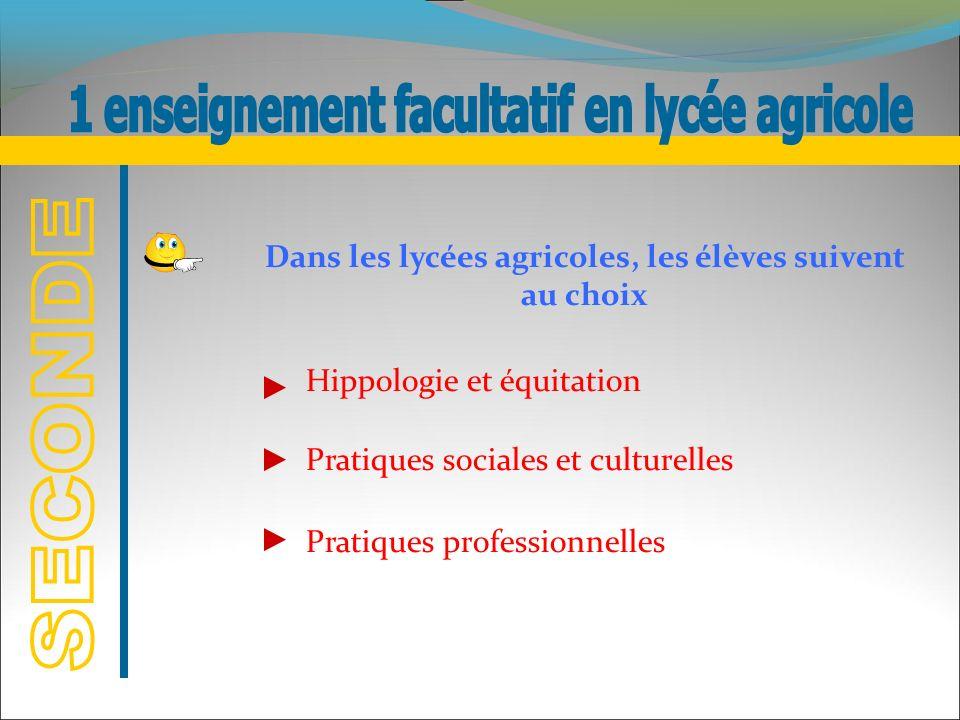 Hippologie et équitation Pratiques sociales et culturelles Pratiques professionnelles Dans les lycées agricoles, les élèves suivent au choix