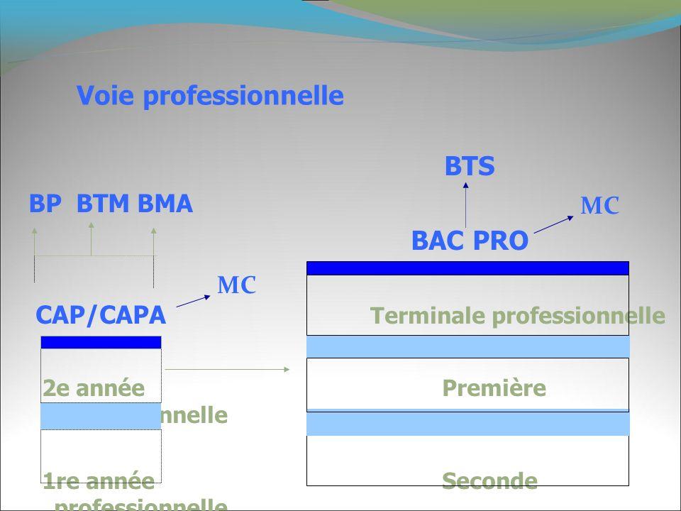 Voie professionnelle BTS BP BTM BMA BAC PRO CAP/CAPA Terminale professionnelle 2e année Première professionnelle 1re année Seconde professionnelle MC