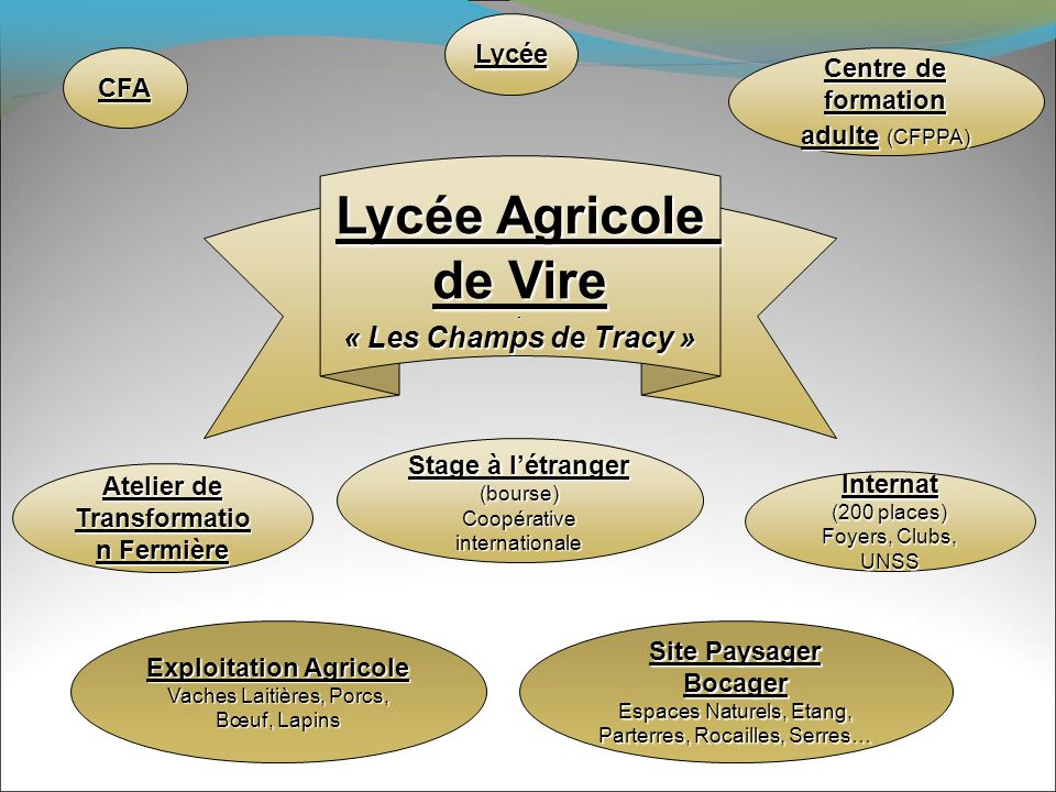 Lycée Agricole de Vire Lycée Agricole de Vire « Les Champs de Tracy » Lycée CFA Centre de formation adulte (CFPPA) Atelier de Transformatio n Fermière