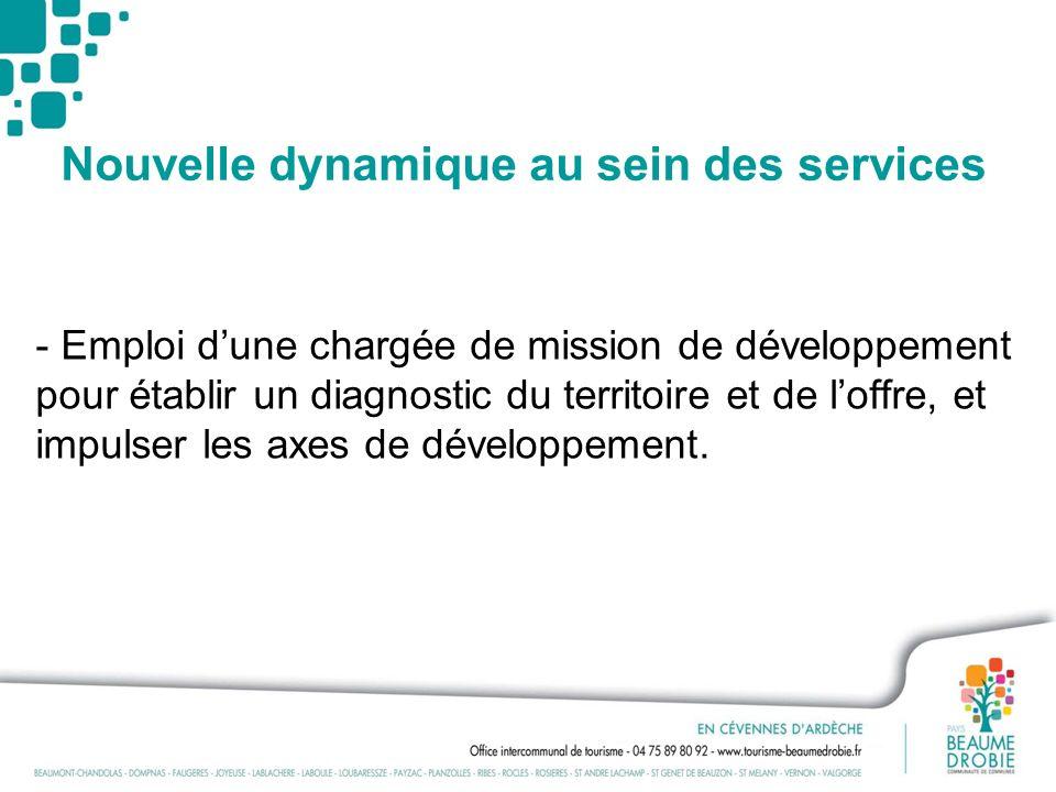 Nouvelle dynamique au sein des services - Emploi dune chargée de mission de développement pour établir un diagnostic du territoire et de loffre, et im