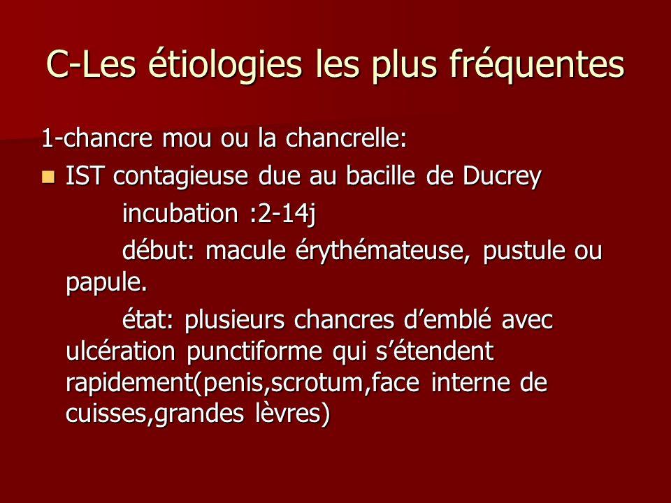 C-Les étiologies les plus fréquentes 1-chancre mou ou la chancrelle: IST contagieuse due au bacille de Ducrey IST contagieuse due au bacille de Ducrey