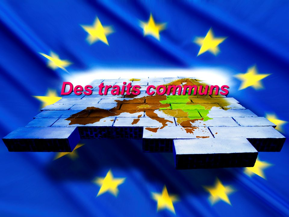 Des traits communs