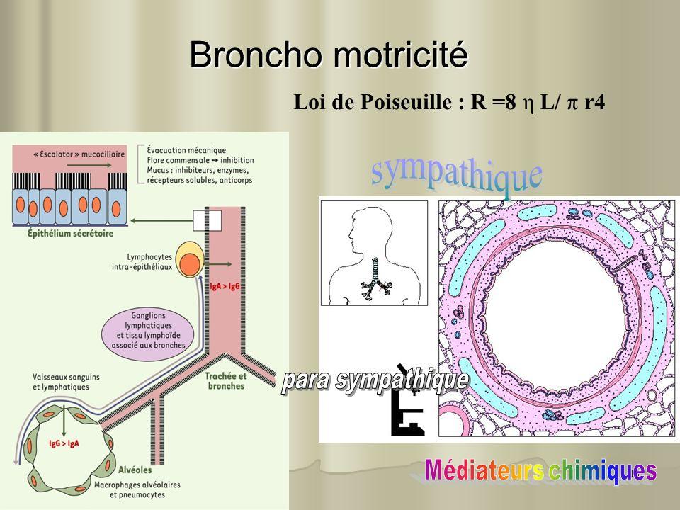 18 Broncho motricité Broncho motricité Loi de Poiseuille : R =8 η L/ π r4