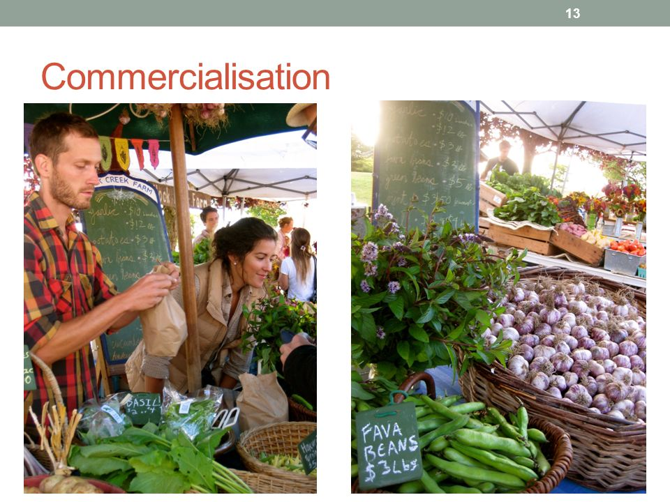 Commercialisation 13