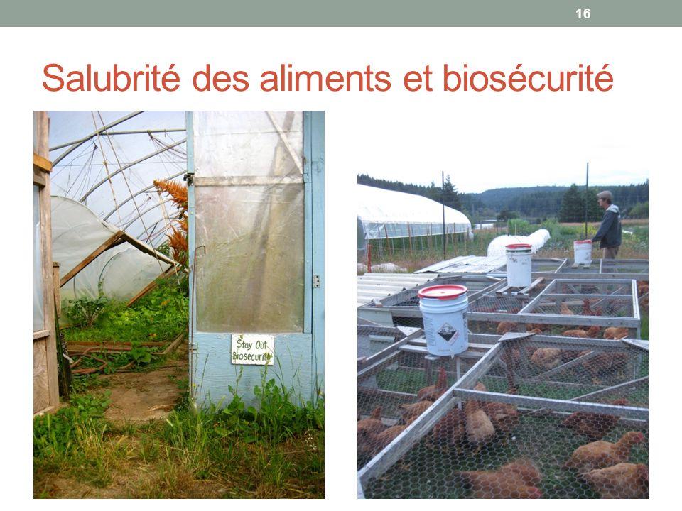 Salubrité des aliments et biosécurité 16