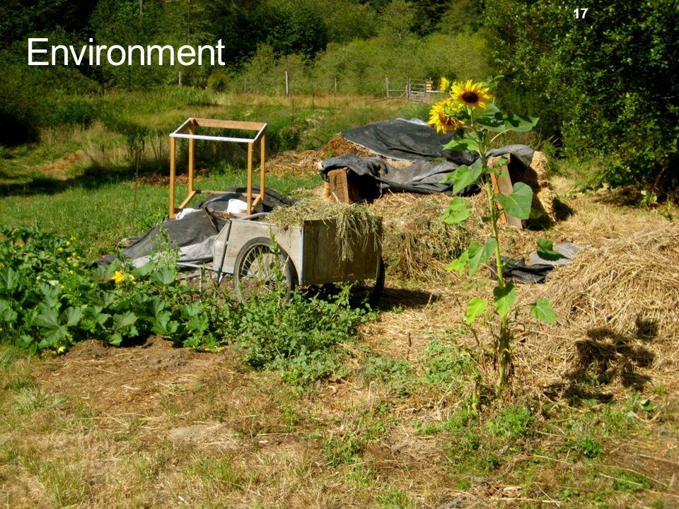 17 Environment