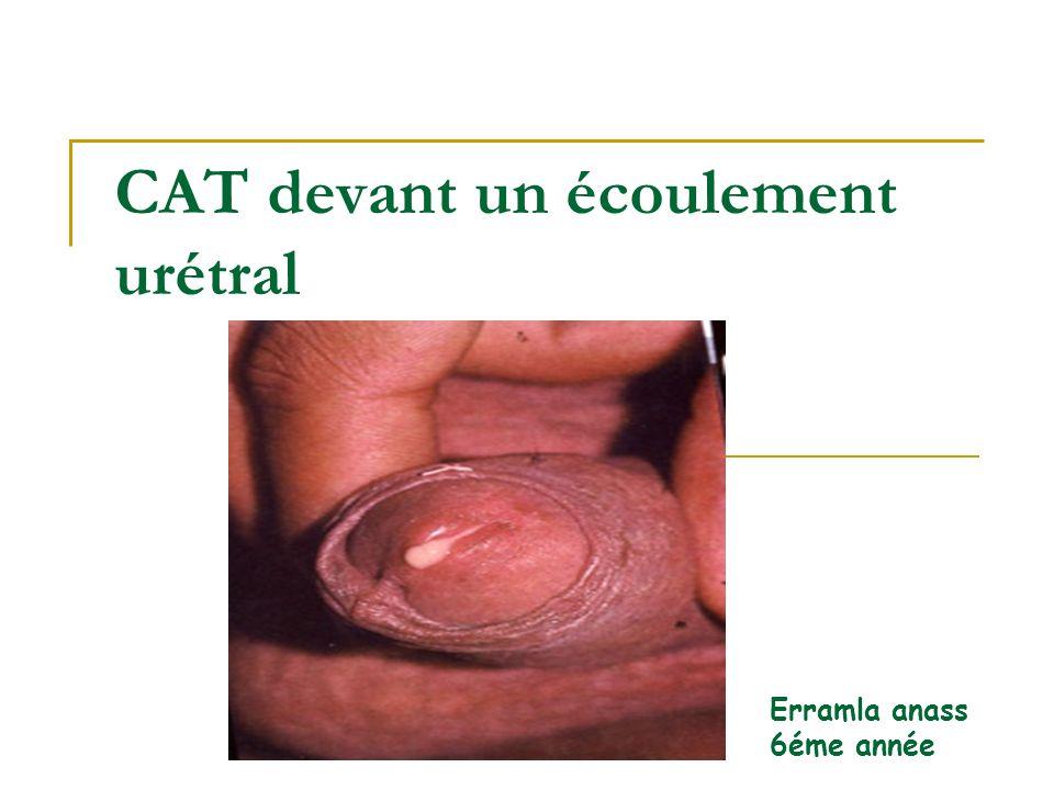 CAT devant un écoulement urétral Erramla anass 6éme année