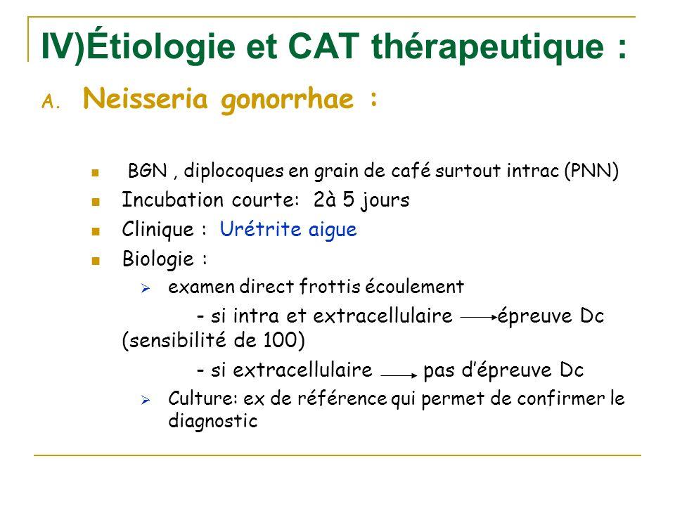 IV)Étiologie et CAT thérapeutique : A. Neisseria gonorrhae : BGN, diplocoques en grain de café surtout intrac (PNN) Incubation courte: 2à 5 jours Clin