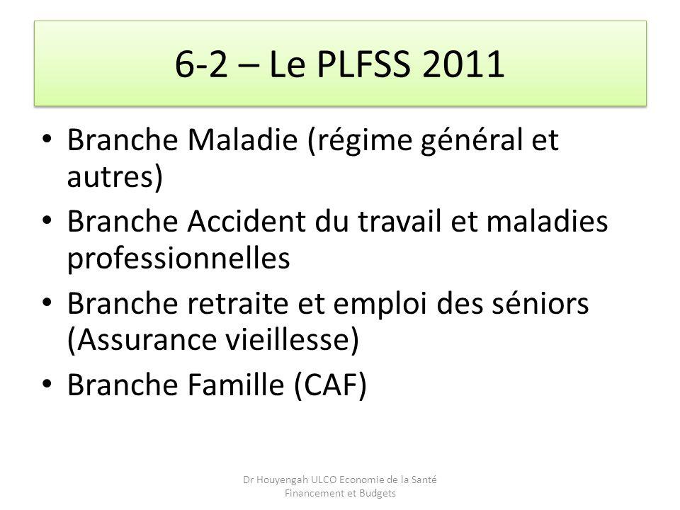 6-2 – Le PLFSS 2011 Branche Maladie (régime général et autres) Branche Accident du travail et maladies professionnelles Branche retraite et emploi des