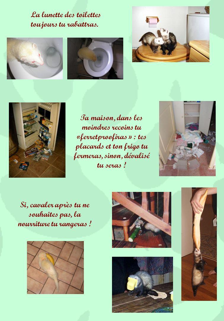 Ramoner ta cheminée plus besoin tu nauras : ton fufu sen chargera (mais le risque quil ne ressemble plus à rien tu prendras!) .