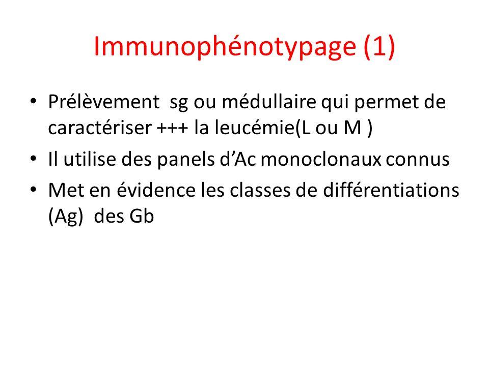 Immunophénotypage (1) Prélèvement sg ou médullaire qui permet de caractériser +++ la leucémie(L ou M ) Il utilise des panels dAc monoclonaux connus Me