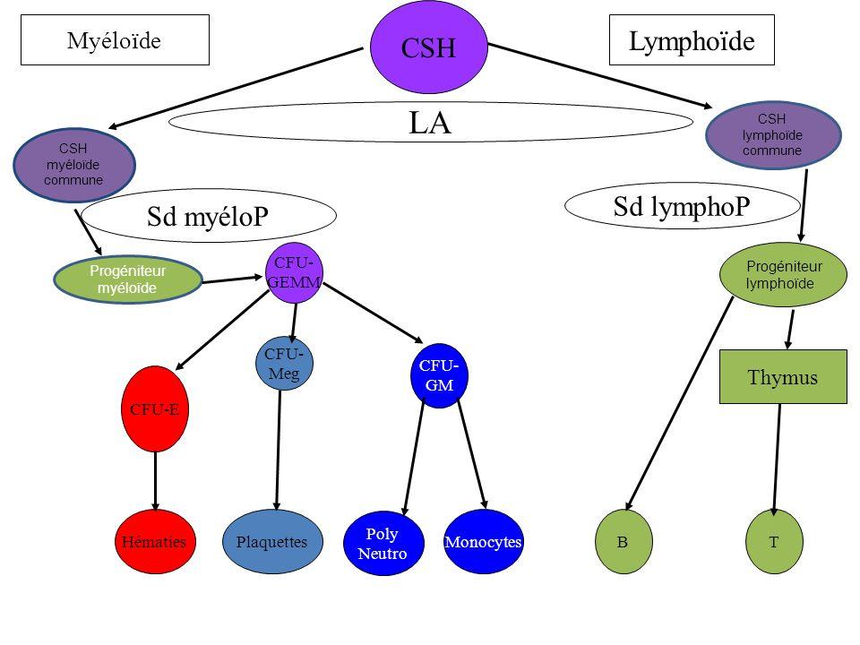S.Cliniques +/- Syndrome anémique +/- Syndrome hémorragique +/- Syndrome infectieux