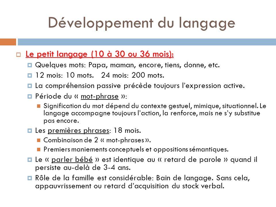 Développement du langage Le petit langage (10 à 30 ou 36 mois): Le petit langage (10 à 30 ou 36 mois): Quelques mots: Papa, maman, encore, tiens, donn