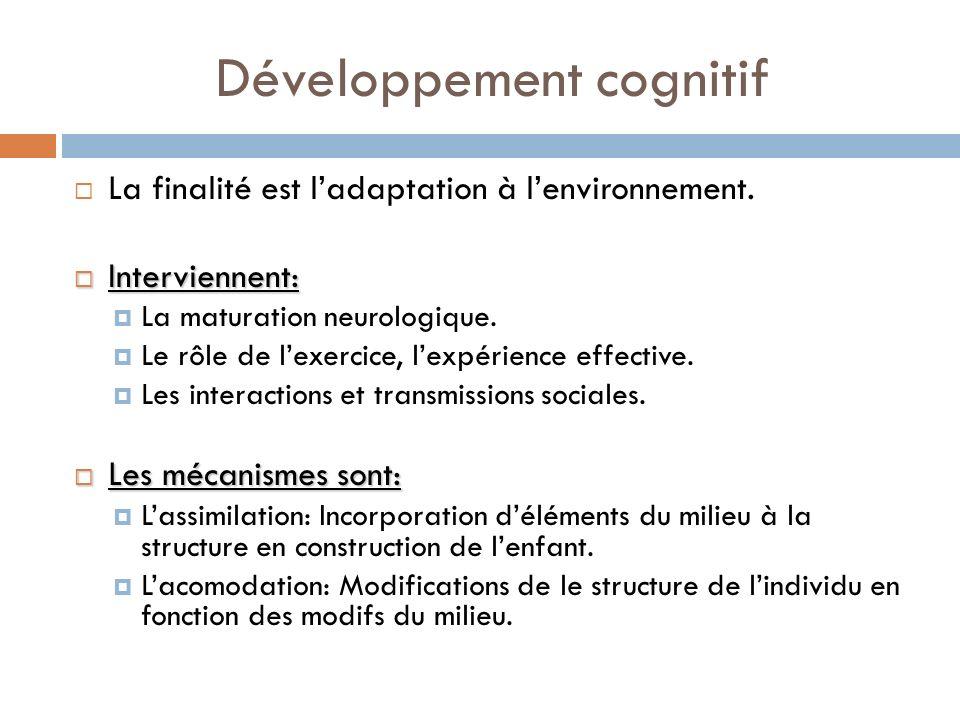Développement cognitif La finalité est ladaptation à lenvironnement. Interviennent: Interviennent: La maturation neurologique. Le rôle de lexercice, l