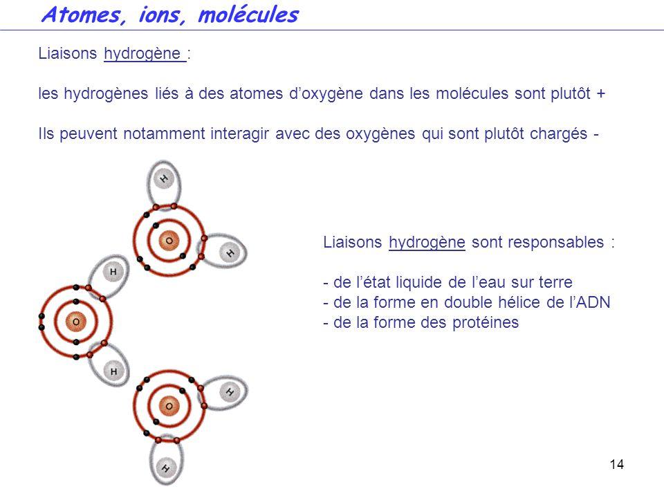 14 Liaisons hydrogène : les hydrogènes liés à des atomes doxygène dans les molécules sont plutôt + Ils peuvent notamment interagir avec des oxygènes q