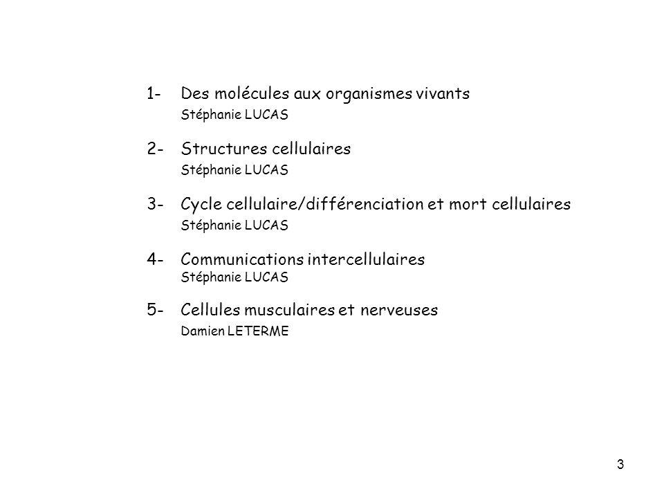3 1- Des molécules aux organismes vivants Stéphanie LUCAS 2-Structures cellulaires Stéphanie LUCAS 3-Cycle cellulaire/différenciation et mort cellulai