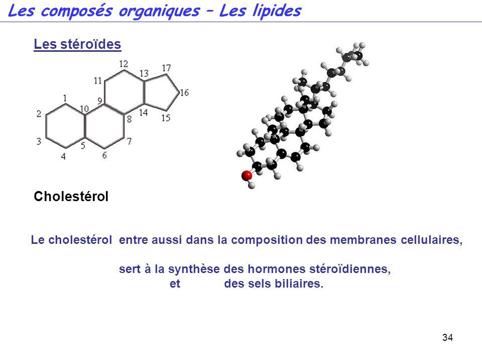 34 Les composés organiques – Les lipides Les stéroïdes Cholestérol Le cholestérol entre aussi dans la composition des membranes cellulaires, sert à la